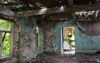 Life in abandoned works by Chris Hurford