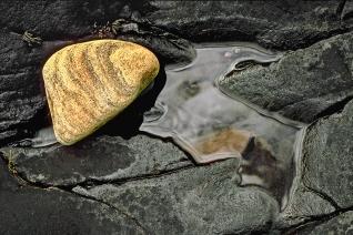 Rock Pool by Les Ayres