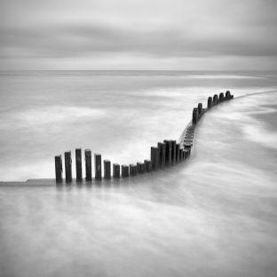 by Sue Longstaff